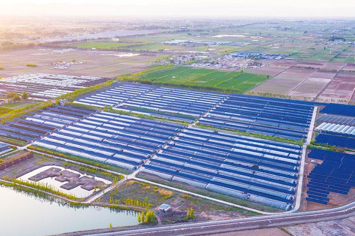 内蒙古巴彦淖尔光伏发电与设施农业一体化项目